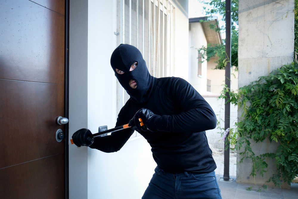 La tecnología más avanzada a la caza de los intrusos
